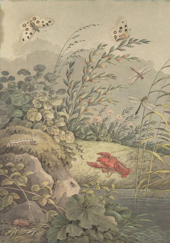 tischbein-fragment-de-nature-berge-avec-ecrevisse-vers-1800-1600x0