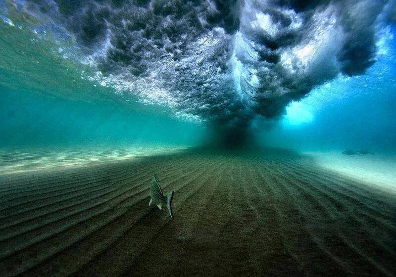 une-vague-vue-par-un-poisson