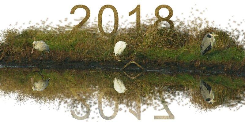 20171228 Bonne année