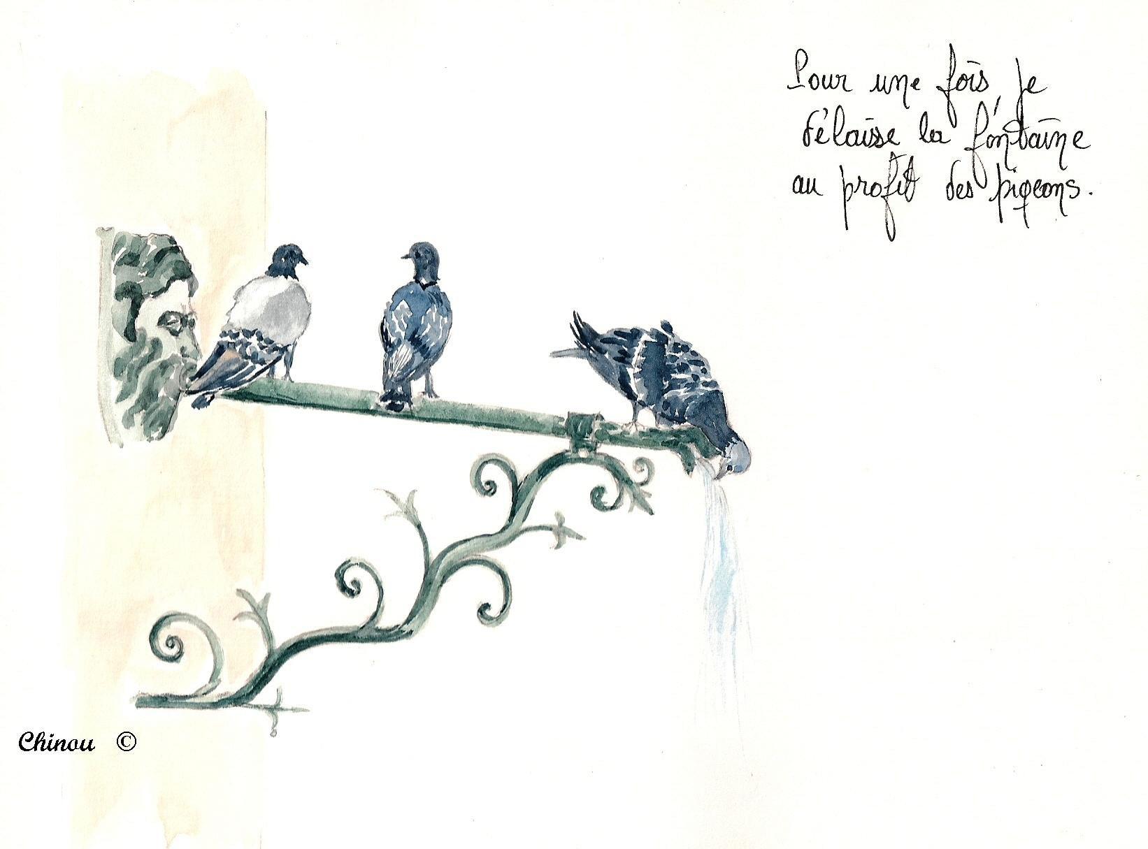 52_Pigeons