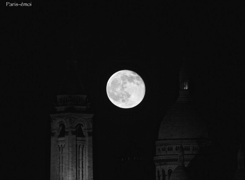 lune 8312nA