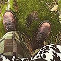 Balade en forêt ....
