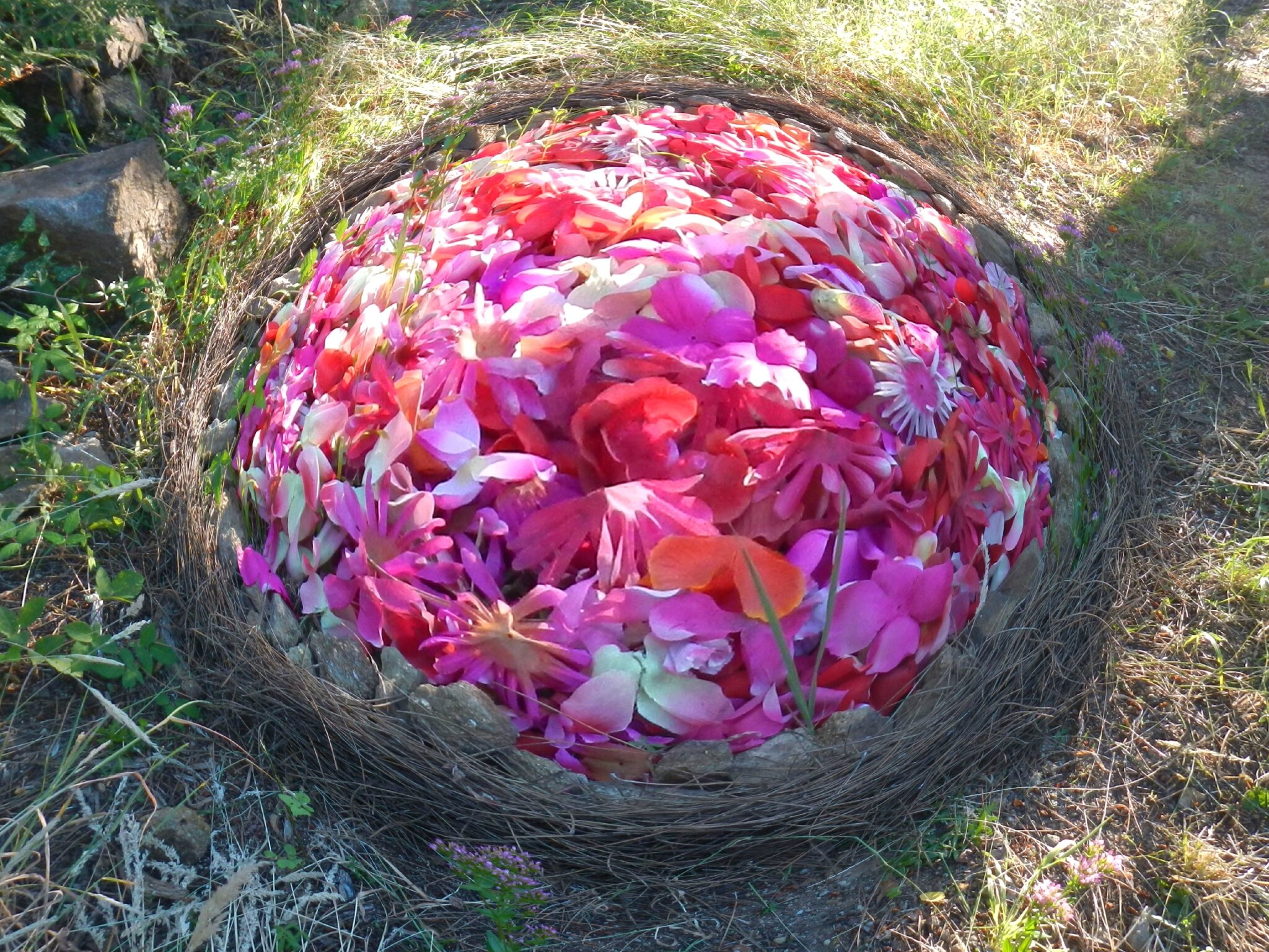 cercle de fleurs rouges et roses 2