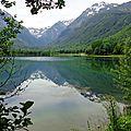 Lac Genos 09061678