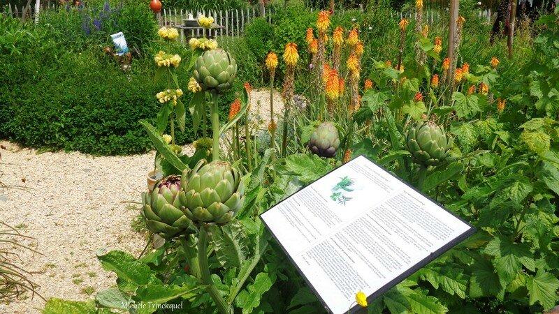 Jardin Poterie Hillen 12061631