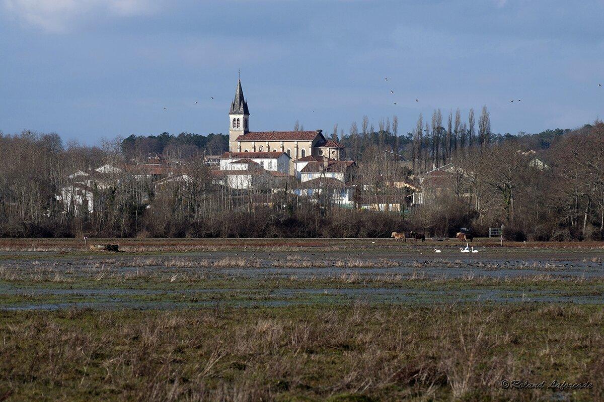 Rivière Saas et Gourby