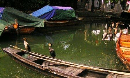 Zhouzhuang cité lacustre (33)