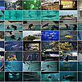 2014-10-09 Musée de la Mer