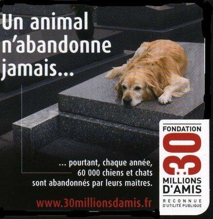 30_millions_d_amis