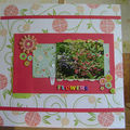 forum envie de scrap page scraplift