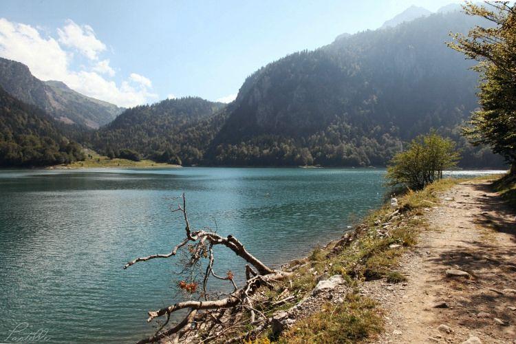 Lac Bious_13 04 08_8555