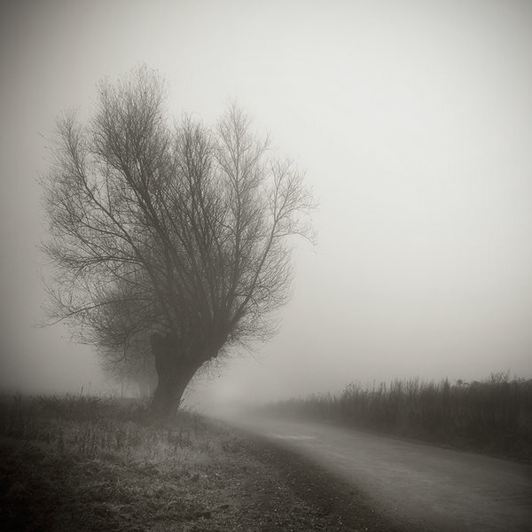in_the_fog_by_piotrus33_d32lr0b
