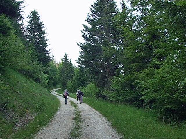 route des Fayolles
