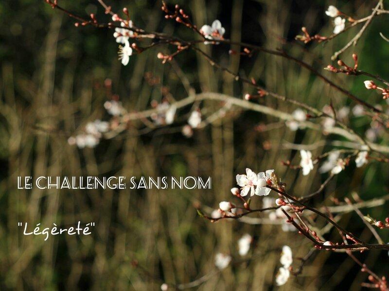 Challenge sans nom - Légèreté