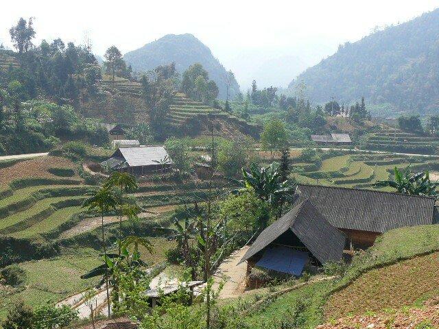 Paysages en terrasses autour de Bac Ha