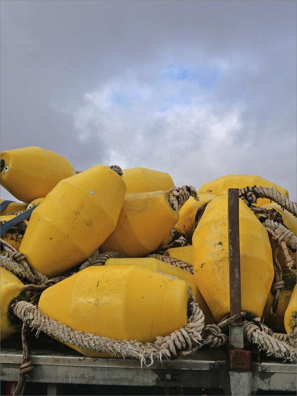 Aiguillon 250220 flotteurs jaunes ciel
