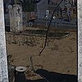 Paulmier joseph (sainte gemme) + 30/10/1918 sainte gemme (36)