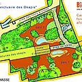 Bioparc de doué-la-fontaine : le plan du «sanctuaire» des okapis» dévoilé