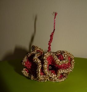 coral_fev_2011_006