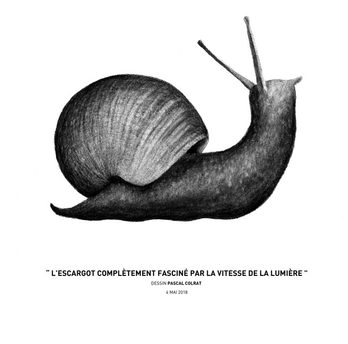 __l_escargot_comple_tement_fascine__par_la_vitesse_de_la_lumie_re__
