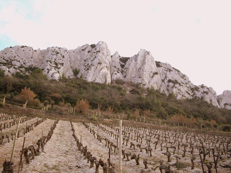 Les dentelles de Montmirail - Vaucluse