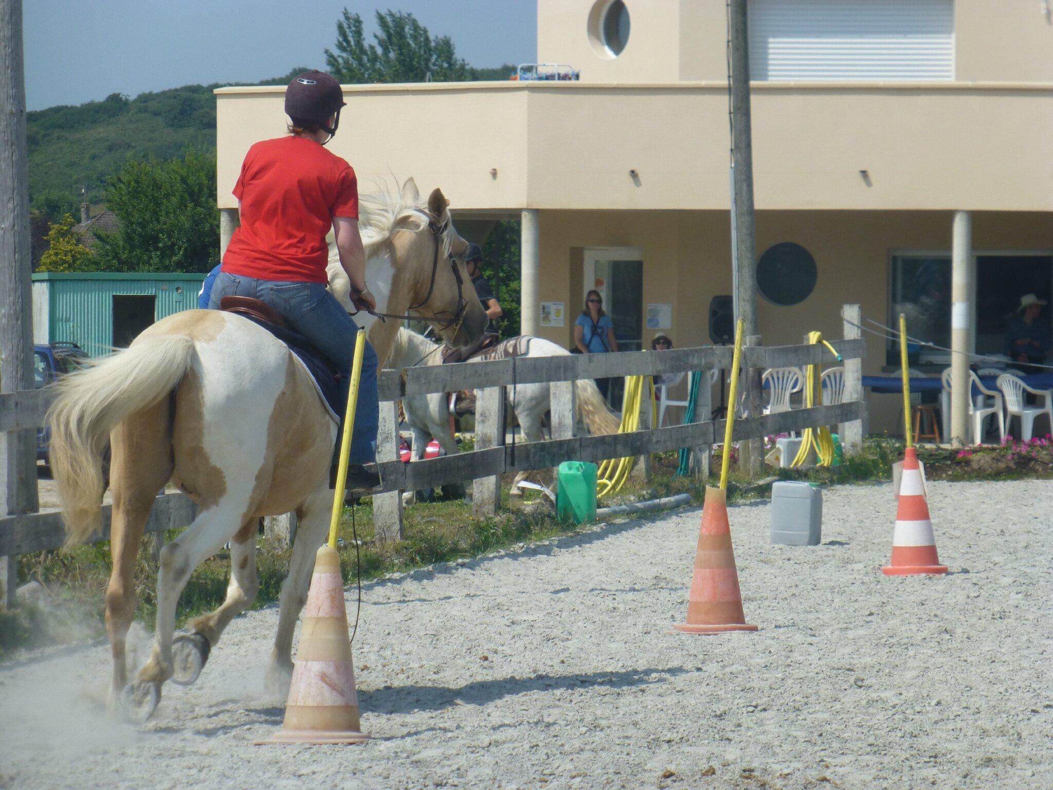 Jeux équestres manchots 2013 (235)