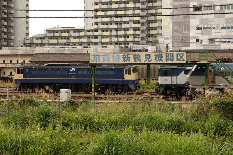 DSC07950