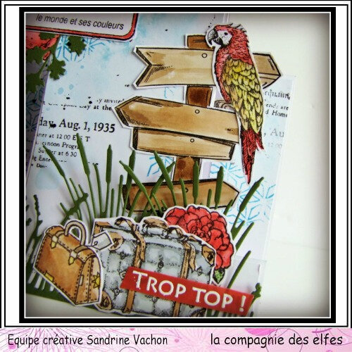 Carte TROP TOP dt LCDE (3)