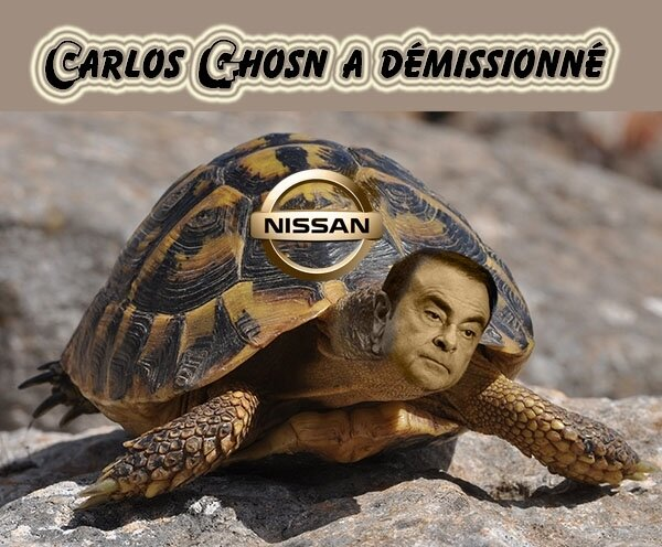 Carlos Ghosn-tortue