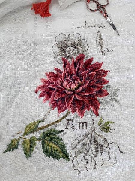 264 - Etude botanique moi