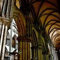 Sous la nef de Notre-Dame.