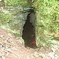 Grotte de jonquilles 3 - fontanes du causse (46)
