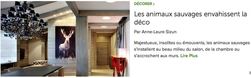 article AL Sizun pour Houzz: animaux déco