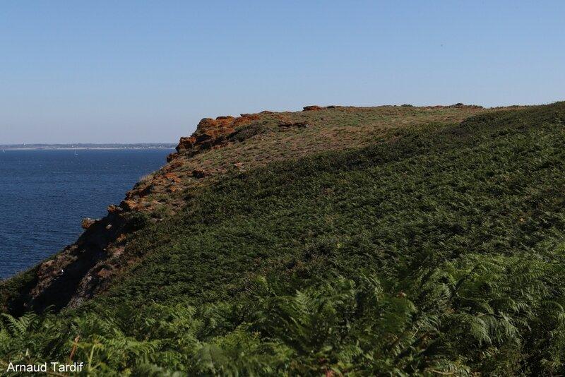 00749 Guidel - L'Ile de Groix - De la Pointe de Pen-Men au Sémaphore de Beg Melen