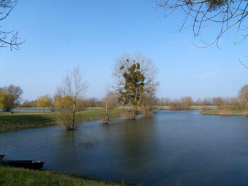 Sarthe-printemps-5