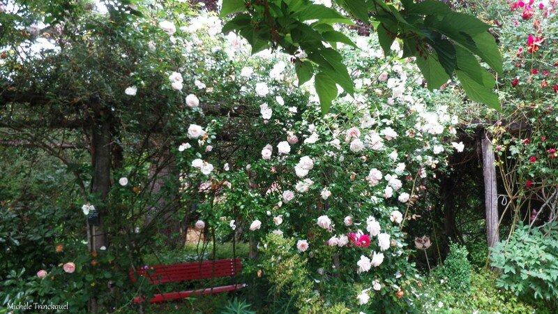 Jardin Poterie Hillen 12061681