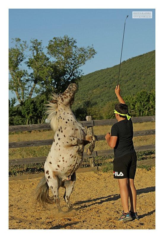 hotos JMP©Koufra 12 - El Rancho - Le Mas de Sisco - 25082020 - 0523