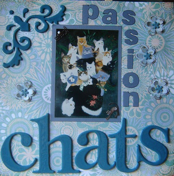 page passion chats