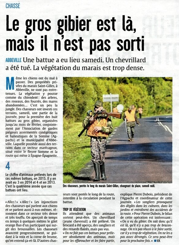 parution courrier picard gros gibier