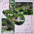 Le Royal Botanic Garden 06