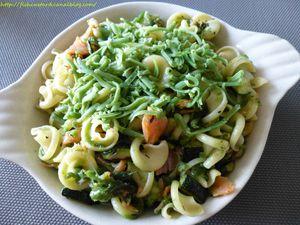Frivoli au saumon, courgettes et gouda au pesto (2)