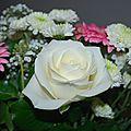 Un bouquet de fleur pour embellir le salon