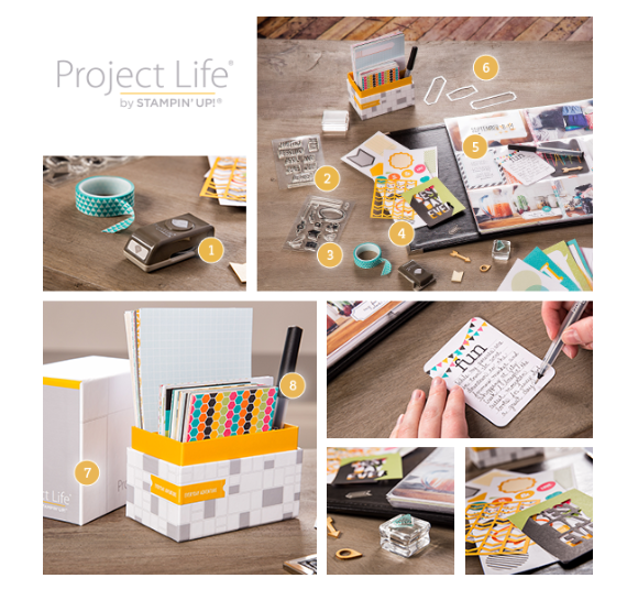 project-life
