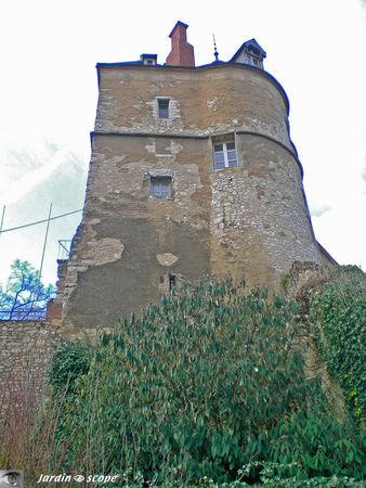 Chateau_Montargis