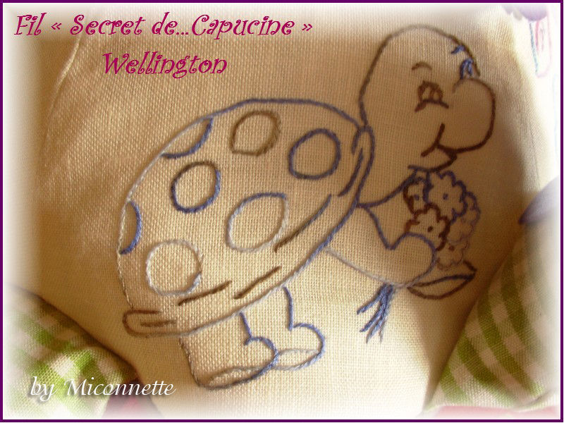 39- Miconnette tortue 01 : http://blog-de-miconnette.kazeo.com