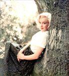 1953_LA_TR_tree_03a