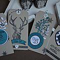 Etiquettes tag bleu canard (2)