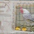 Cici14 une poule sur un mur oct 07