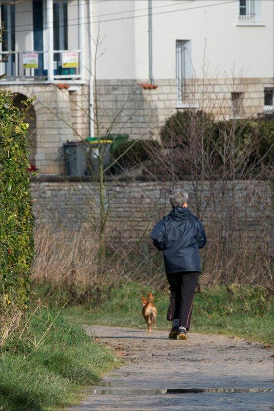 ville joggeuse chien 2