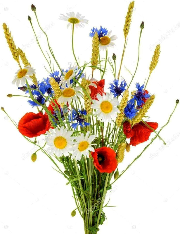Bouquet bleu, blanc, rouge de fête des mères
